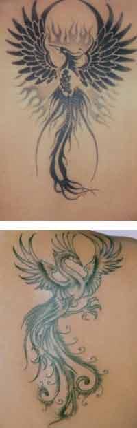 Foto di Tatuaggi di una Fenice e una Fenice Tribale