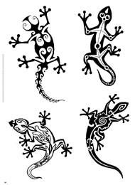Geco tattoo for Disegno geco