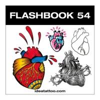Anatomische Herzen